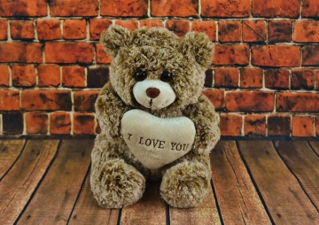 teddy-2061220_1920